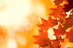 стихи для детей про осень