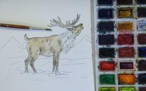 как нарисовать оленя карандашом
