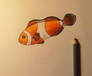 рисунок рыбки