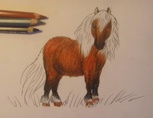 как нарисовать пони