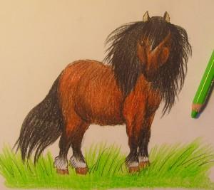 рисунок пони