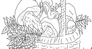 Раскраски корзина с грибами