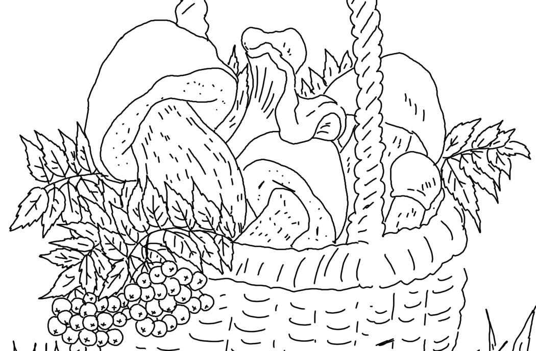 с грибами рисунок корзинка карандашом
