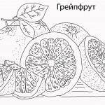 8грейпфрут