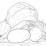 Раскраски картошка с капустой