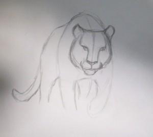 kak_narisovat_tigra4