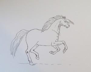 как нарисовать коня карандашом поэтапно