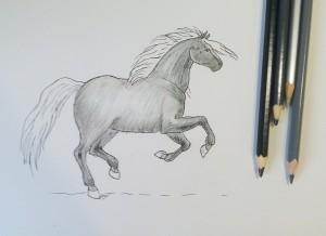 конь карандашом
