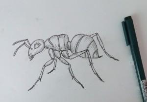 нарисовать муравья ребенку