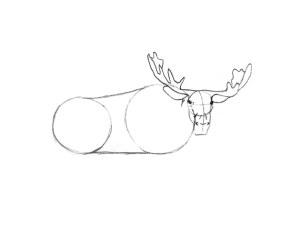 как нарисовать лося карандашом